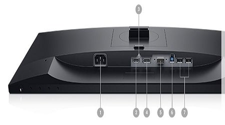 Connectivity of Dell P2319H